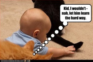 funny-pictures-baby-will-pull-cat-tail1